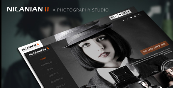ThemeForest Nicanian II Responsive WordPress Theme 4903998