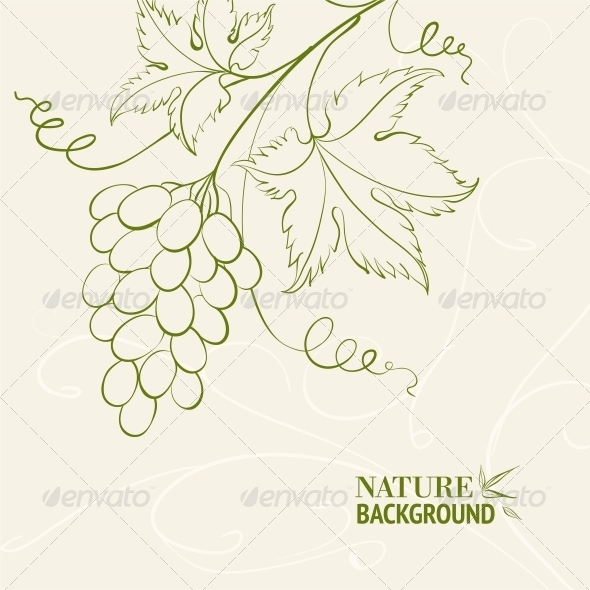 GraphicRiver Grape Wine Card 4960774