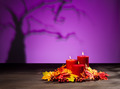 Candles in Halloween setting - PhotoDune Item for Sale