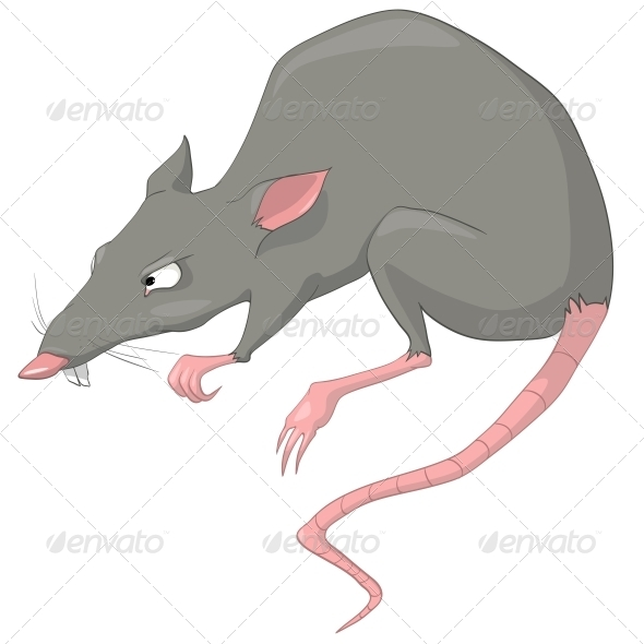 GraphicRiver Cartoon Character Rat 4969463