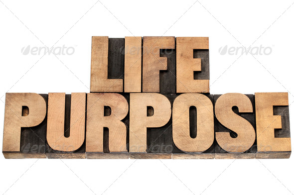 life purpose in wood type - Stock Photo - Images