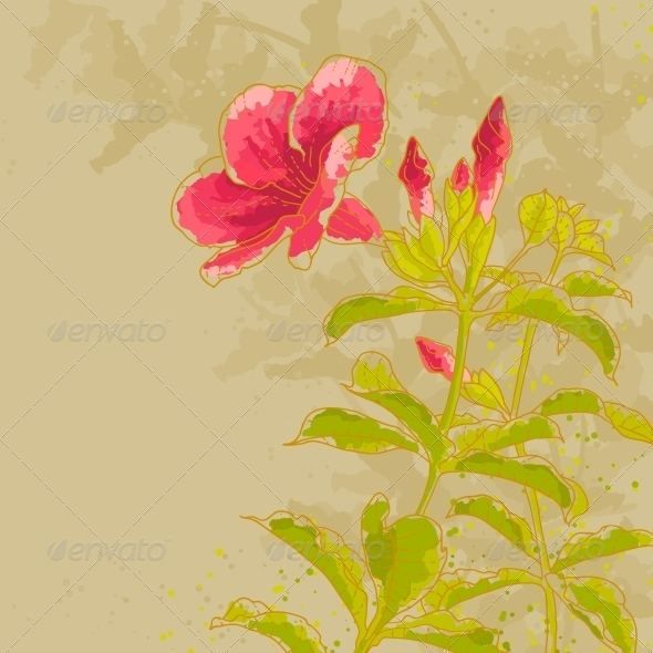 GraphicRiver Allamanda Flower on Toned Background 4977464