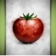 Tomato Watercolor - GraphicRiver Item for Sale