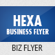 Business Hexa Flyer - GraphicRiver Item for Sale