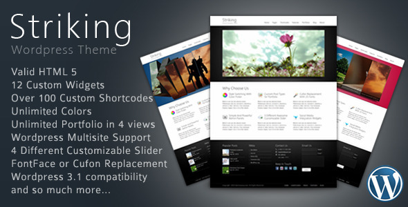 Striking Premium Corporate &amp; Portfolio WP Theme - ThemeForest Item for Sale