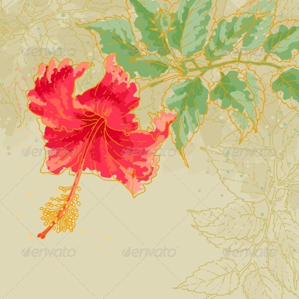 GraphicRiver Hibiscus Flower on Toned Background 5004740
