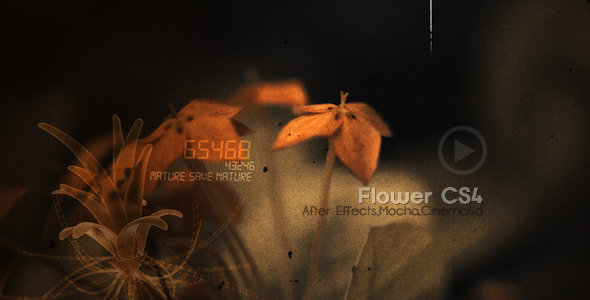 After Effects Project - VideoHive Flowers CS4 516680