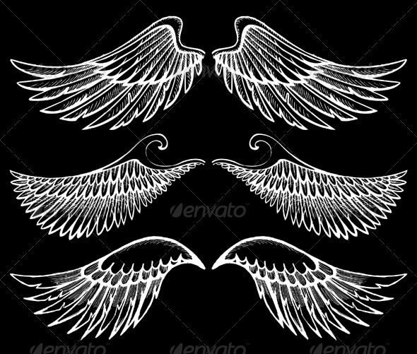 GraphicRiver Wings Set 5007981