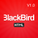 BlackBird - Responsive HTML5 Template - ThemeForest Item for Sale