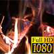 Burning Campfire - VideoHive Item for Sale