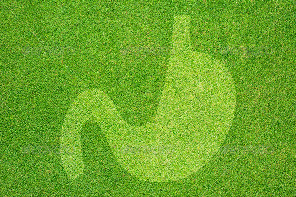 Stomach icon on green grass texture and background - Stock Photo - Images