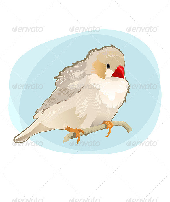 GraphicRiver Bird on Branch 5018379