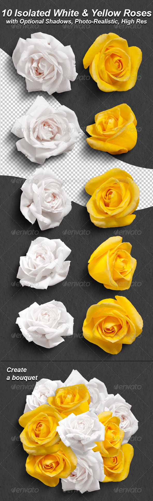 GraphicRiver 10 Photo-Realistic Isolated White and Yellow Roses 5044365