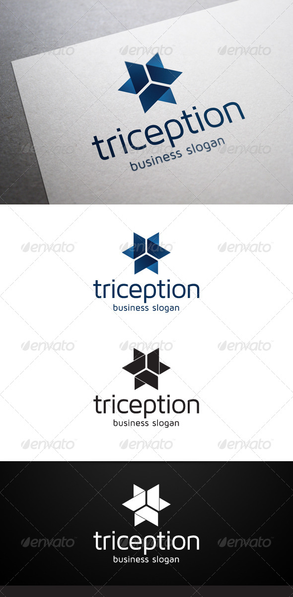 GraphicRiver Triception Logo 5046495
