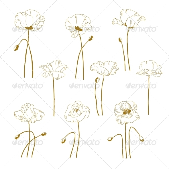 GraphicRiver Set of One-Colored Outlined Poppy 5060633