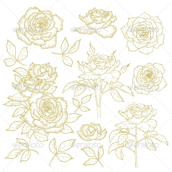 GraphicRiver Set of One-Colored Outlined Roses 5060868
