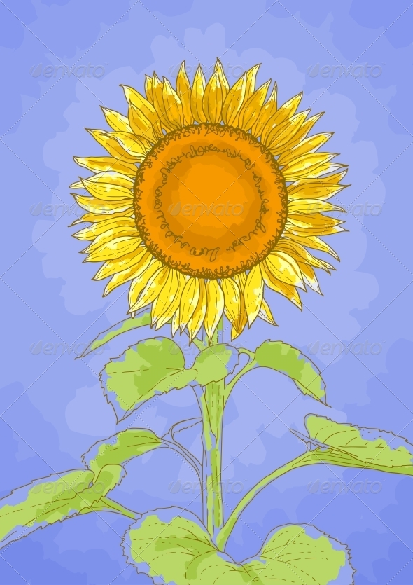 GraphicRiver Sunflower and Blue Sky 5061205