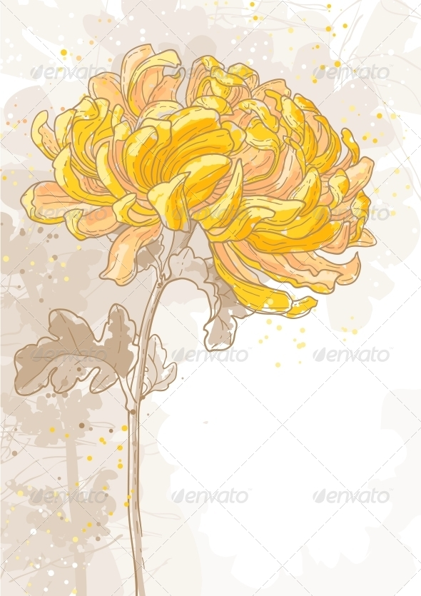 GraphicRiver Romantic Vector Background with Chrysanthemum 5061289