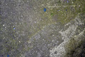 Grunge Concrete Texture - PhotoDune Item for Sale
