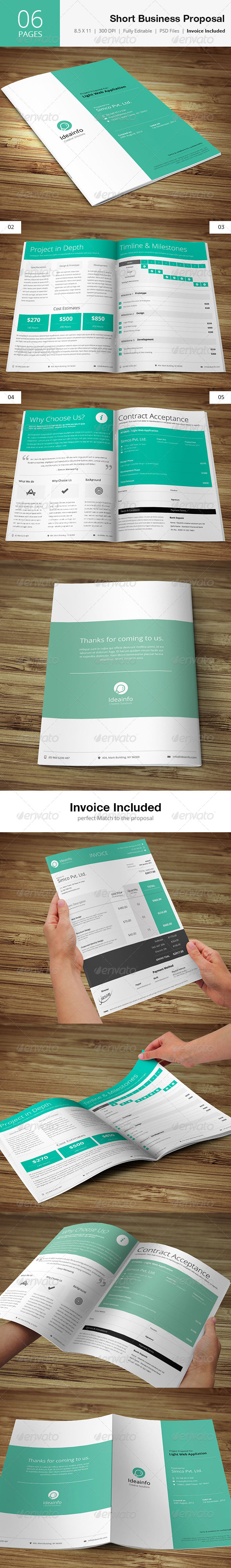 GraphicRiver Short & Quick Business Proposal 5031434