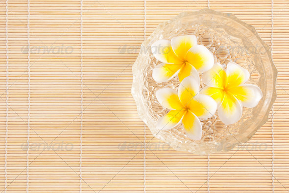 Leelawadee flowers in the water on bowl - Stock Photo - Images
