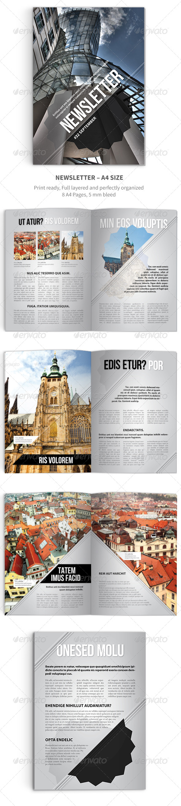 GraphicRiver Newsletter vol 12 Indesign Template 5115816