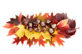 Autumn still life. - PhotoDune Item for Sale