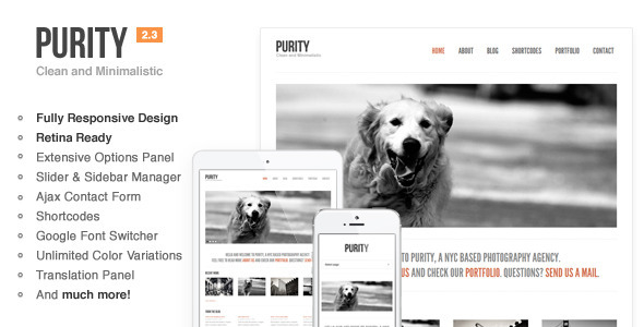 Purity: Responsive, Clean, Minimal & Bold WP Theme - Creative WordPress