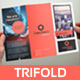 Business Trifold Brochure - GraphicRiver Item for Sale