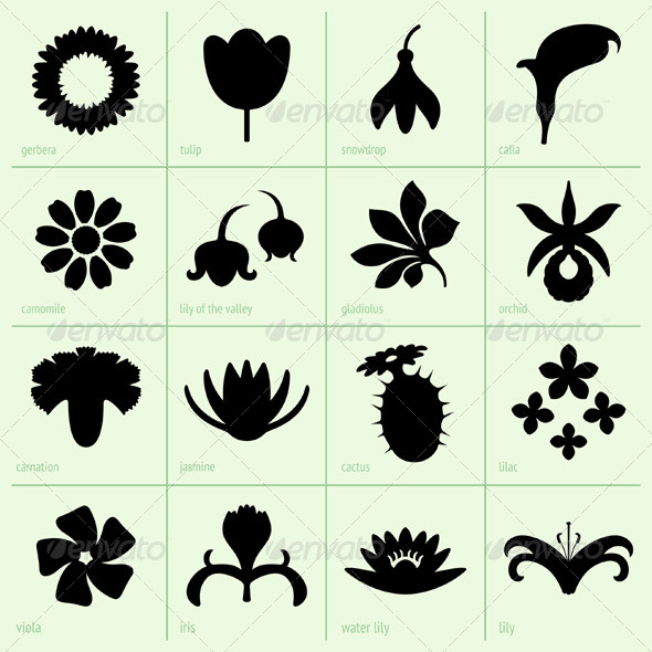 GraphicRiver Flower Silhouettes 5174799