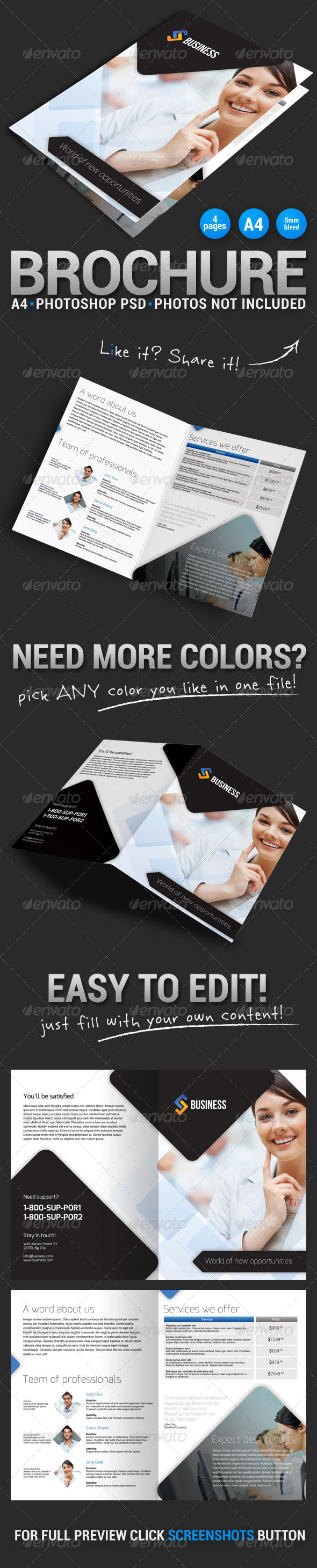 GraphicRiver Bi-fold Brochure 1 5178877