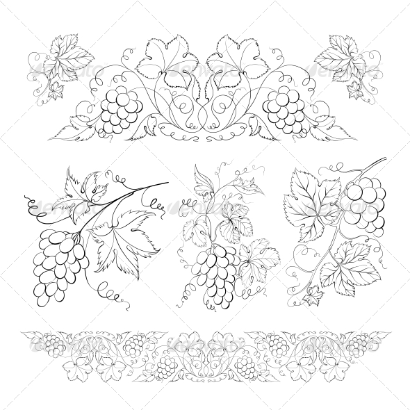 GraphicRiver Hand Drawn Grape Set 5190322