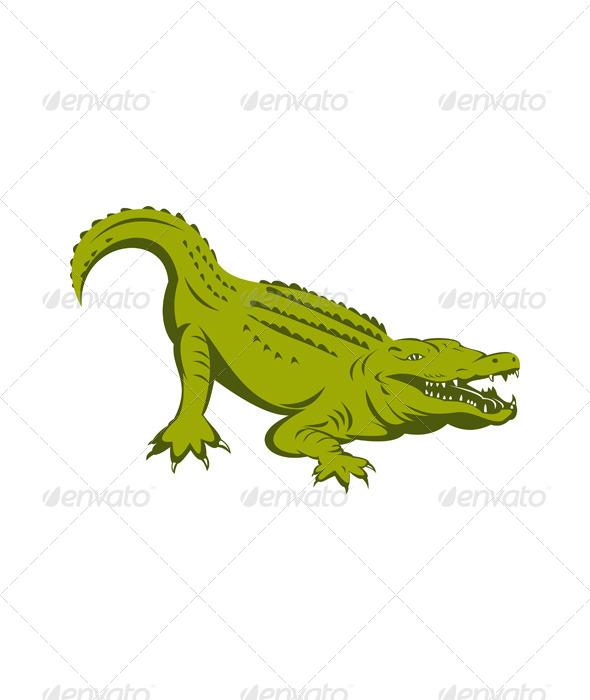 GraphicRiver Alligator Head 5198823