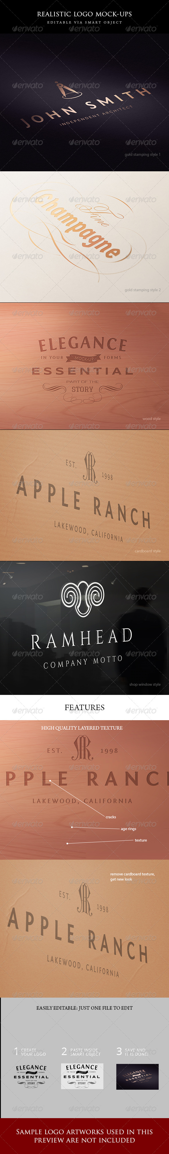 GraphicRiver 5 logo mock-ups 5211248