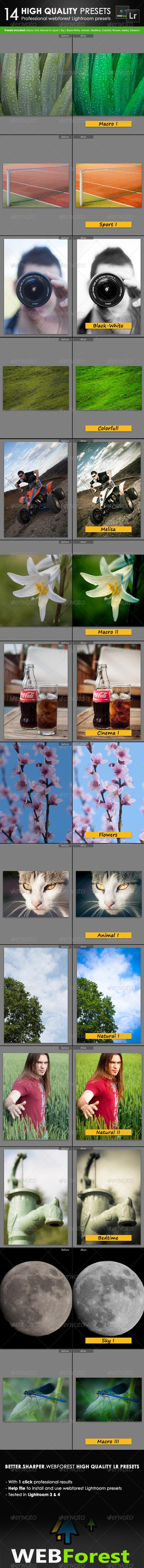 GraphicRiver 14 High Quality Lightroom Presets 5155628