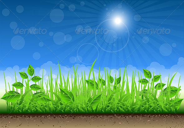 GraphicRiver Grass Border on Clear Sky Background 5222334