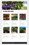 05_gallery_vineyard.__thumbnail