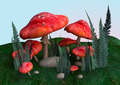 Toadstools  - PhotoDune Item for Sale