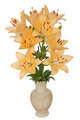 Asian lily flowers, lat. Asiatic Hybrids, in a ceramic vase, iso - PhotoDune Item for Sale