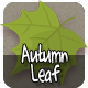 Autumn Leaf - CodeCanyon Item for Sale