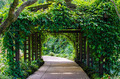 Walkway Path through the Garden - PhotoDune Item for Sale