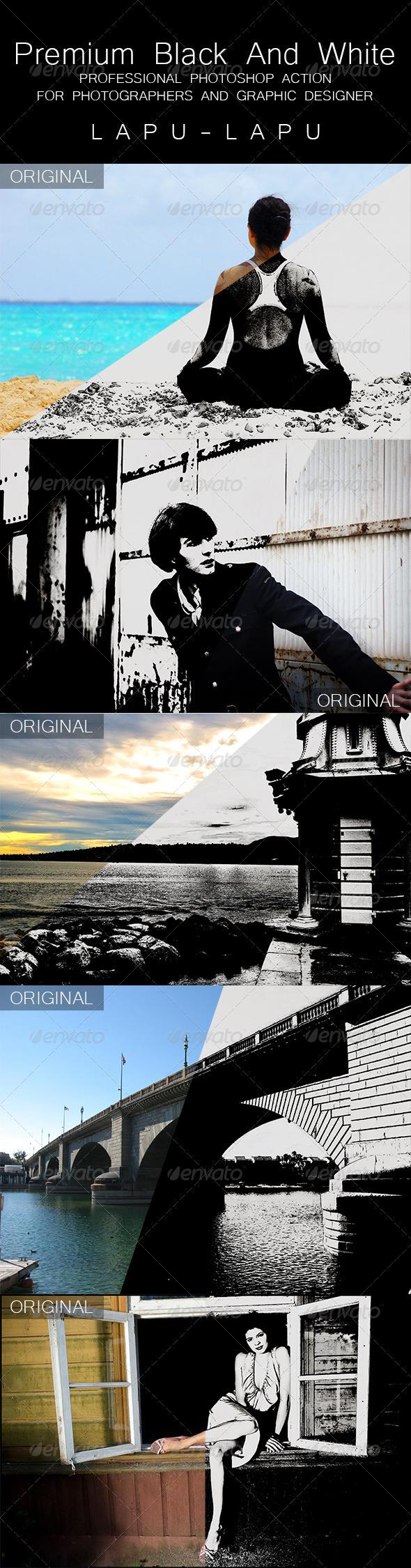 GraphicRiver Premium Black And White 5257080