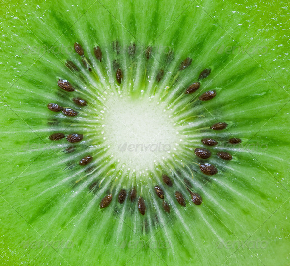 Kiwi Background - Stock Photo - Images