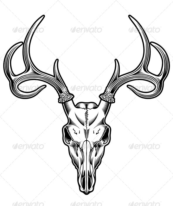 GraphicRiver Deer Skull Vector 5292297