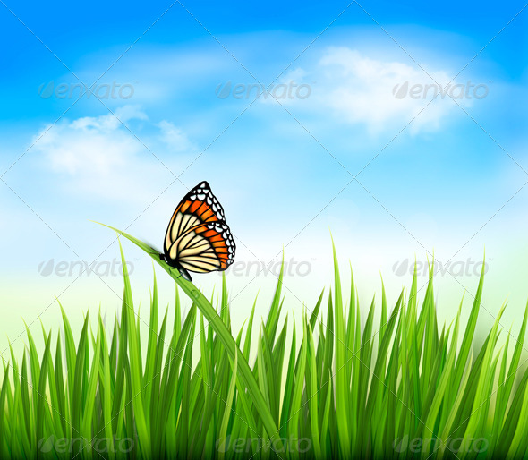 GraphicRiver Nature Background with Green Grass and a Butterfly 5296259