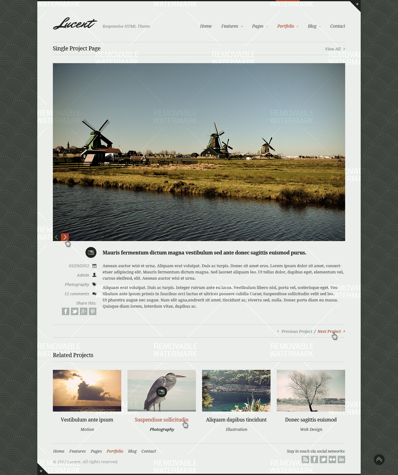 Lucent - Stylish Portfolio/Blog Responsive Theme