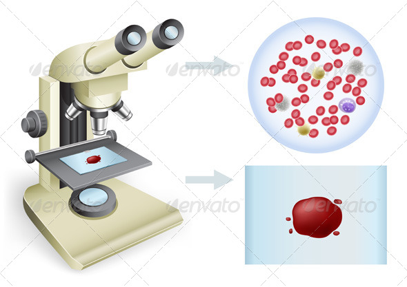 GraphicRiver Blood under a Microscope 5301934