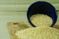 Quinoa grains - PhotoDune Item for Sale