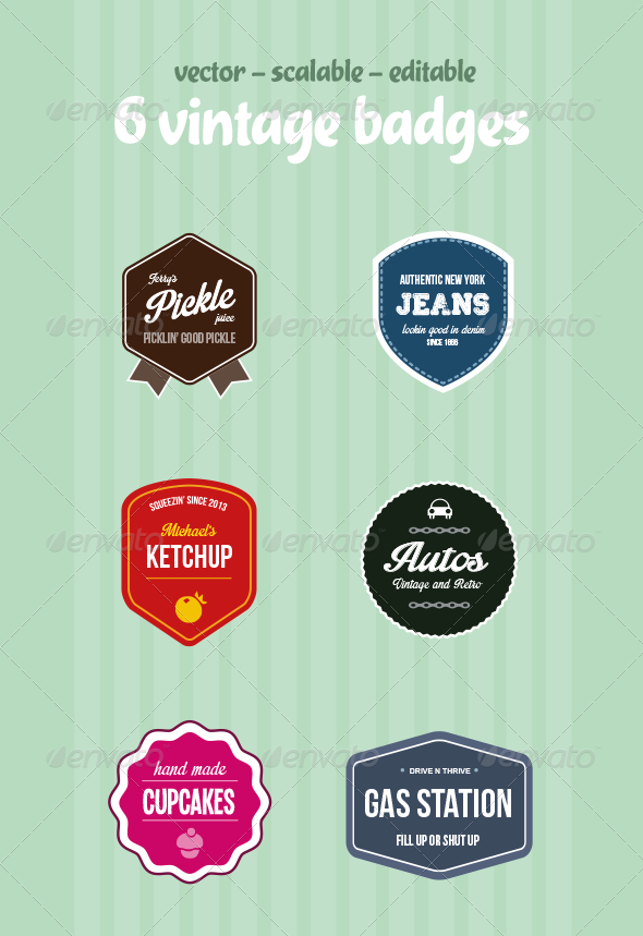 GraphicRiver Vintage Badges 5334883
