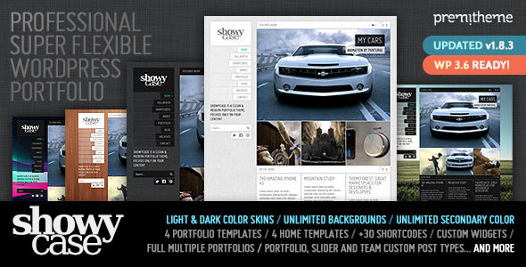 ShowyCase - Portfolio / Photography WP Theme - Portfolio Creative